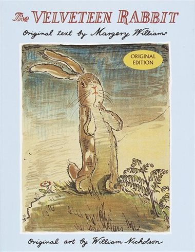 Cover of Margery Williams's The Velveteen Rabbit, picturing a stuffed toy rabbit in a garden.