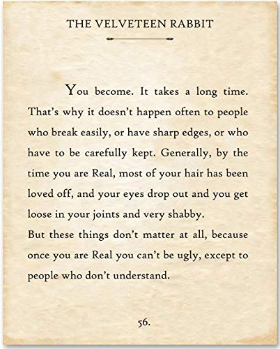 An excerpt from the book The Velveteen Rabbit, with a quote from the Skin Horse.
