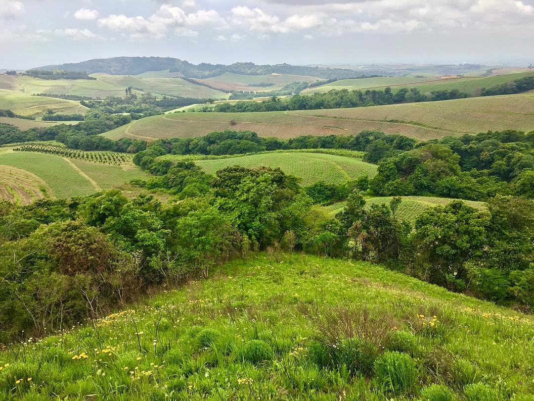 green hills of kwazulu-natal
