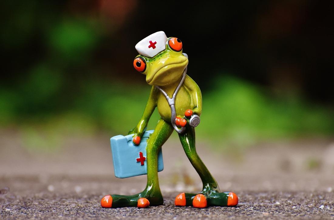 Doctor Frog