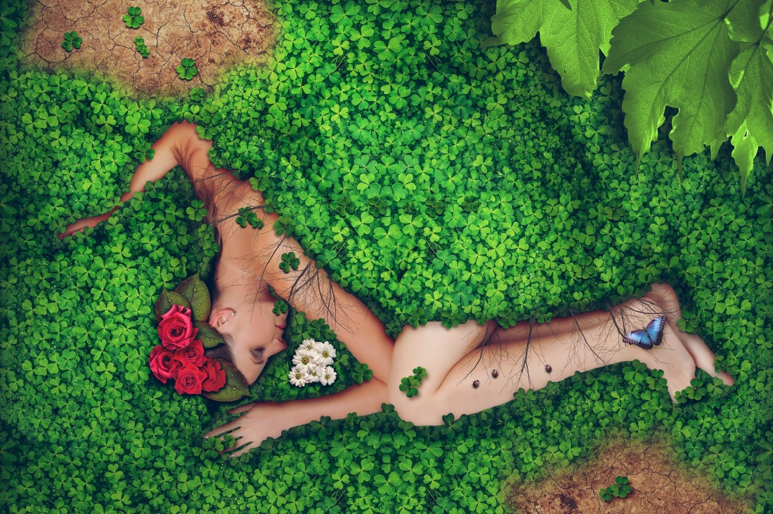 woman lying under bush and flowers